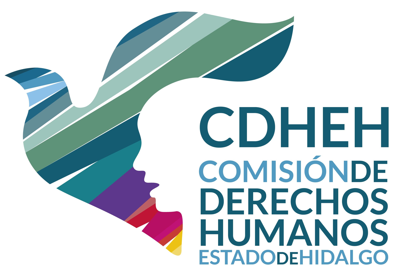 INFORMA CDHEH SOBRE LA PETICIÓN DE ORGANIZACIONES SOCIALES DE INICIAR ACCIÓN DE INCONSTITUCIONALIDAD
